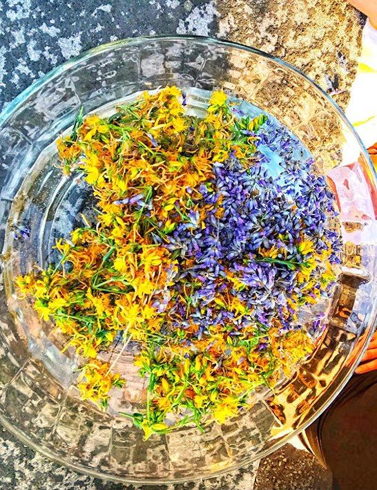 Percorsi con le Essenze Floreali